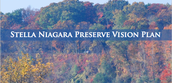 Stella Niagara Vision Plan